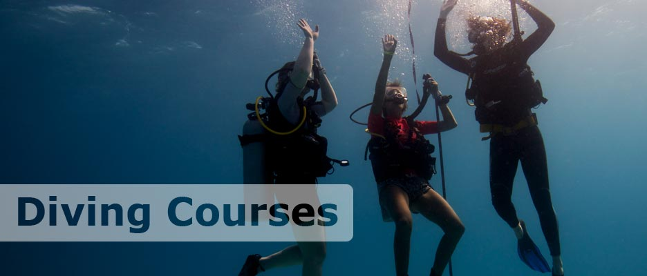 diving courses with deep deep down